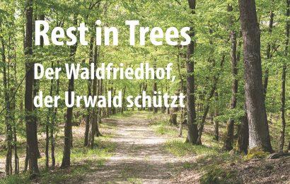Der Waldfriedhof, der Urwald schützt
