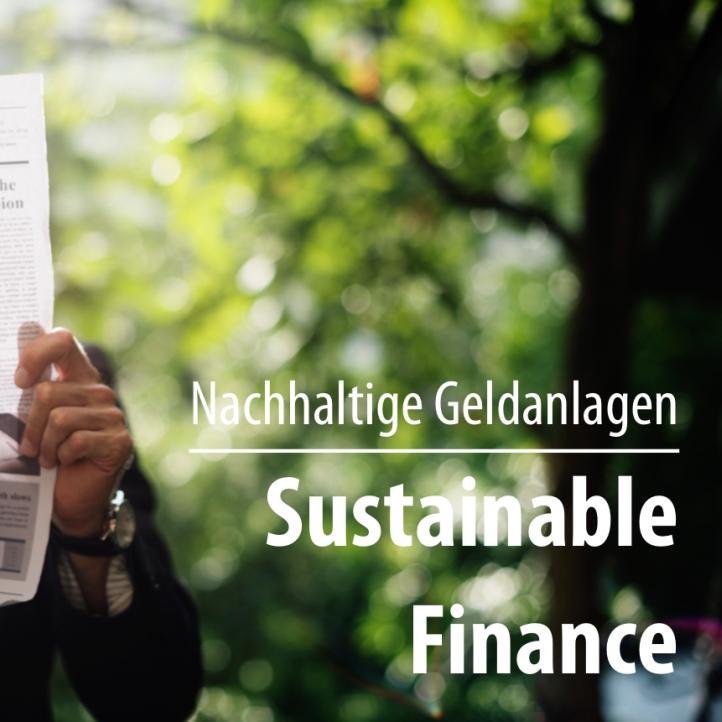 Waldinvestment als nachhaltige Geldanlage