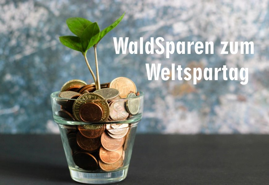 Weltspartag 2020: Nachhaltig Geld sparen für die Zukunft