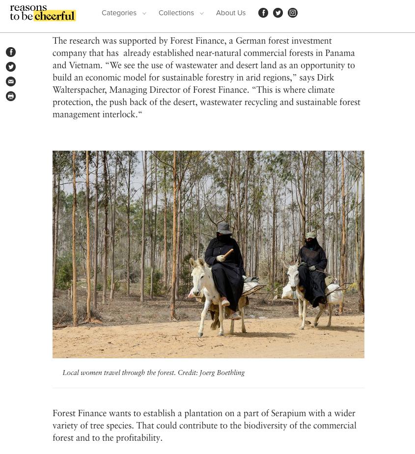 Auf reasonstobecheerful.world berichtet Klaus Sieg über die DesertTimber-Projekte von ForestFinance