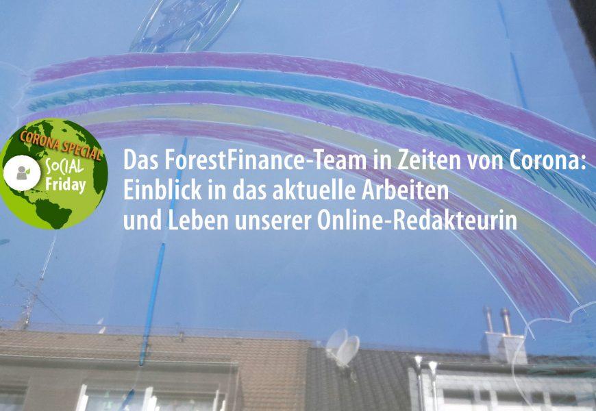Das ForestFinance-Team in Zeiten von Corona