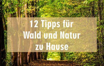 12 Tipps und Empfehlungen um Wald und Natur nach Hause zu holen