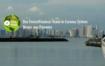Das ForestFinance-Team in Zeiten von Corona: