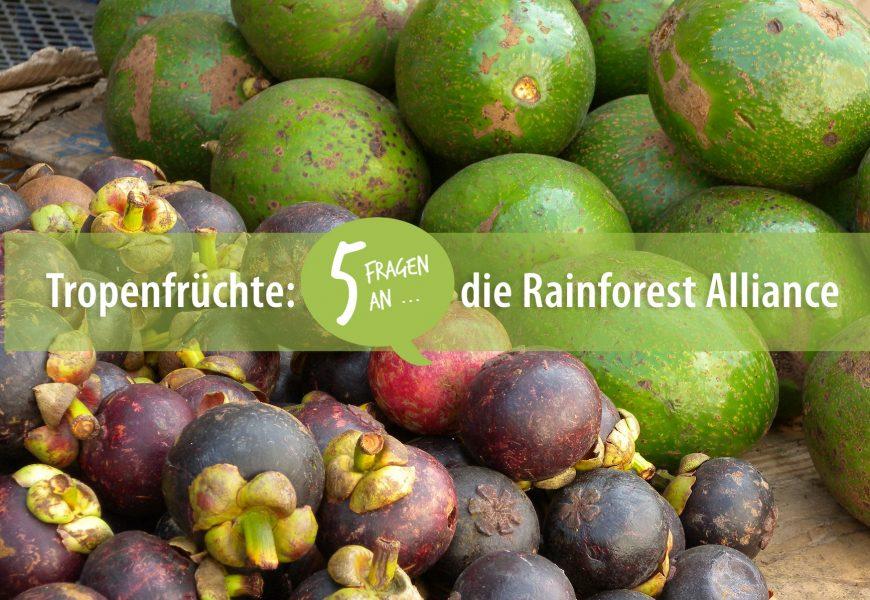 Tropenfrüchte: 5 Fragen an die Rainforest Alliance