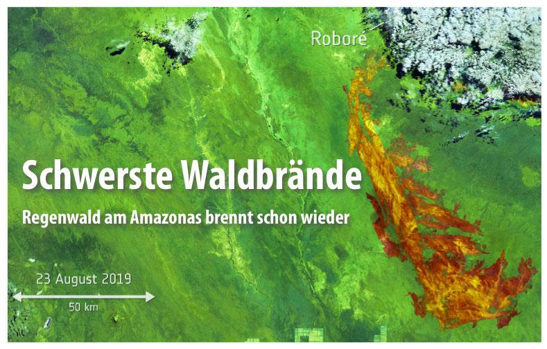 Regenwald am Amazonas brennt. Schon wieder