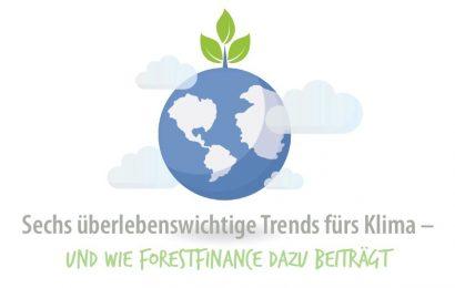 Sechs überlebenswichtige Trends fürs Klima – und der Beitrag von ForestFinance